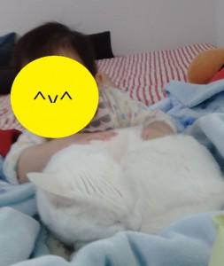 赤ちゃんと猫1